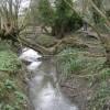 Canal overflow ditch, Warwick