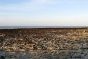 Peacehaven Beach