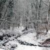 River Calder St Johns Wood after snow fall