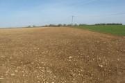 Freshly tilled land near Grateley