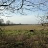A large hay meadow at Aldbury