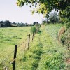 Footpath to Friston