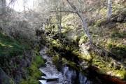Langwell Water, Berriedale