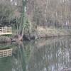 River Avon, Warwick