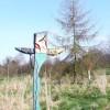 Onslow Arboretum