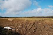 Farmland with bales