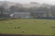 Newton Farm, near Bicknoller