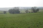 Pasture, Hareshaw