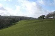 North Hill: farmland near Trebartha