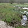Ashford Hill Meadows Nature Reserve