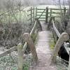 Footbridge within Ashford Hill Meadows Nature Reserve