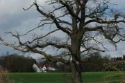 South Of Boreham