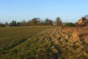 Farmland, Elcot