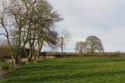 Fields Of Risbury