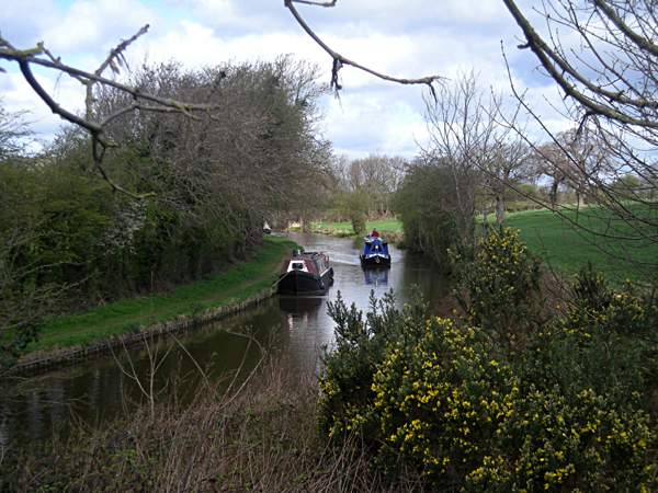 Narrow boats on the Llangollen Canal