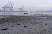 Mud exposed at low tide, River Test
