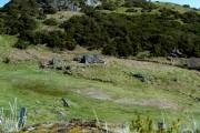 Ruined croft near Muie