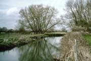 Lesser Teise River