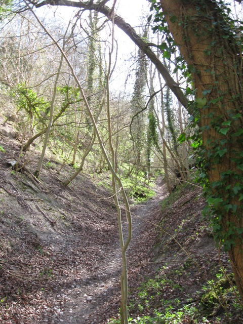 Byway on County Boundary – the Holloway gets even deeper