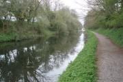 The Grand Western Canal, near Ayshford