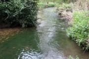 River Darenth