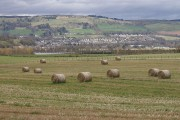 Haybales at Corntown, Black Isle