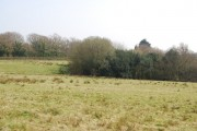 Woodland east of Barley Mow Lane