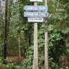 Woodland signpost