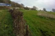 Plas-Crwn Farmland