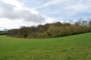 Kiln Wood from the Greensand Way