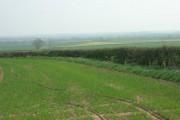 Farmland near the A614