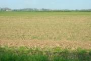 Farmland near Harpham