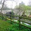 The High Bridge, Knaresborough
