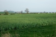 Farmland near Marston Lane