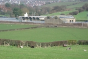 Farm land at Burrow Bridge