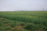Farmland at East Newton