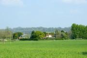 Freith Farm field