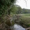 Bransgore, River Mude