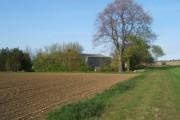 Fields around Bacton Hall