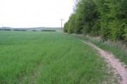 Harthill - Farmland alongside Broad Bridge Dike
