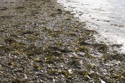 Beach, Ullapool