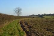 Farmland, Nuffield