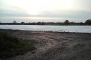 Plastic Field
