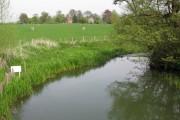 The Great Stour near Worten