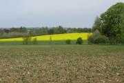 Looking NE across farmland from Worten Wood