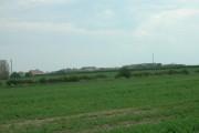 Farmland South of Beeford