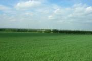 Farmland South of Low Fields