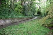 Pathway through woods near Mount Vernon Station
