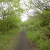 Disused railway line from Upton
