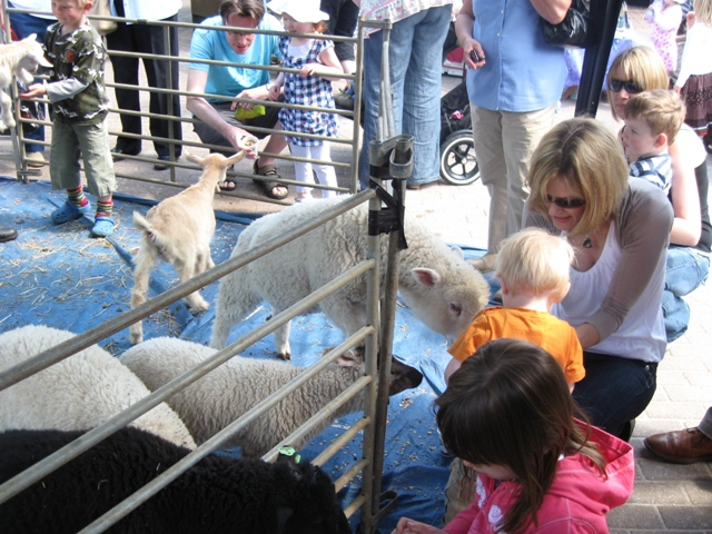Tring Spring Fayre in Church Square 2009: Children feeding kids and lambs